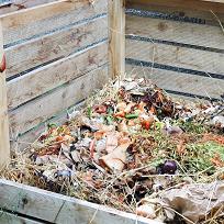 compost-thumbnail