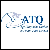 ATQ 2-thumbnail