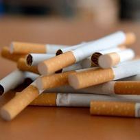 loi tabac 1-thumbnail