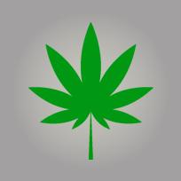 Cannabis_vedette (2)